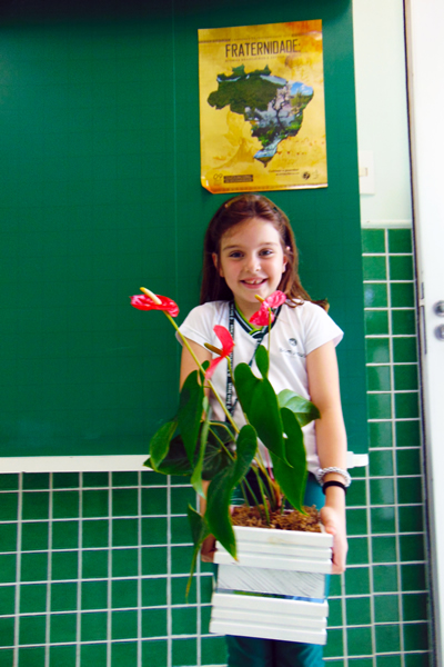 Uma flor era a resposta ao mistério lançado aos alunos.
