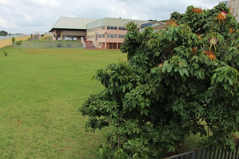 Ampla área verde
